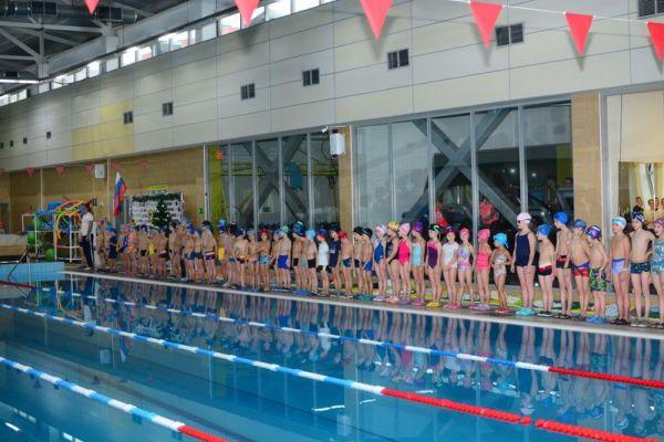 Ежегодные соревнования по плаванию